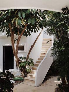 Outdoor staircase!                                                                                                                                                      More