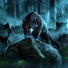 Wolf Photos, Wolf Pictures, Fantasy Creatures, Mythical Creatures, Wolf Hybrid, Bull Elephant, Wolf Artwork, Werewolf Art, Fantasy Wolf