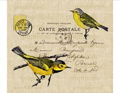 Paris Carte Postale yellow brown birds Digital download image for Fabric transfer burlap decoupage pillows cards No. 668