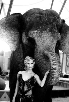 Reese Witherspoon - Water for Elephants