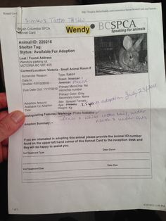 Apparently L'il Grey's real name is Wendy!
