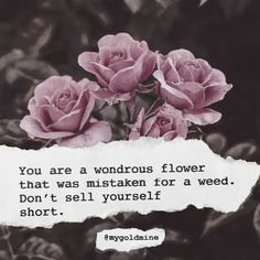 Flower Quotes Inspirational, Affirmations Positives, Be Yourself Quotes, Believe, Life Quotes, Collage, Deep, Photo And Video, Rose
