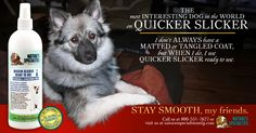 Check out our Quicker Slicker Conditioning, Dematting and Detangling spray on our website at: http://shop.naturesspecialtiesmfg.com/QUICKER-SLICKER-READY-TO-USE-FOR-DOGS-CATS_c33.htm