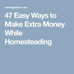 47 Easy Ways to Make Extra Money While Homesteading