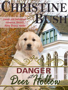 Danger At Deer Hollow by Christine Bush