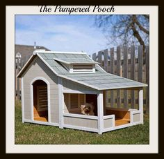 Luxury Dog House