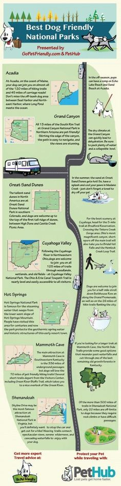 We teamed up with PetHub gets lost pets home faster. gets lost pets home faster. to bring you this infographic highlighting the most dog friendly national parks in the US! Visit Us Bus Camper, Campers, Shih Tzu, Training Tips, Dog Training, Crate Training, Hiking Dogs, Backpacking With Dogs, Traveling With Dogs