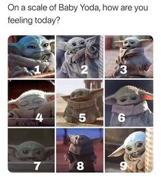 Dry out the tears your trying day with this gallery full of funny memes and interesting pics. Funny Cute, The Funny, Hilarious, Daily Funny, Yoda Meme, Star Wars Jokes, Stupid Funny Memes, Funny Stuff, Funny Gifs
