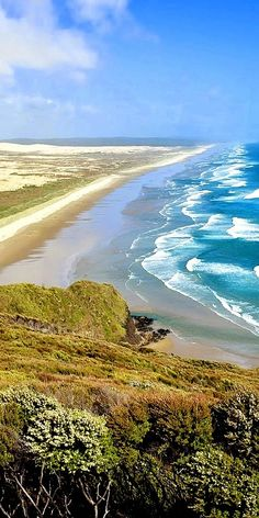 90 Mile beach, you will walk all of its 55 mile length! North Island, New Zealand ~ The Beautiful Country, Beautiful World, Beautiful Places, New Zealand Beach, New Zealand Travel, Auckland, The Places Youll Go, Places To See, New Zealand Houses