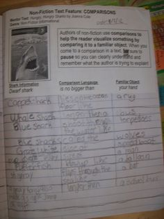 Life in 4B...: non-fiction text features