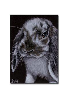 BUNNY 70 konijn zwart Nederlandse Pasen huisdier potlood Sandrine Curtiss Art…