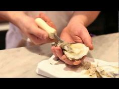 Mario Batali Presents: How to Shuck an Oyster