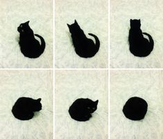 How to Become a Circle, by Cat