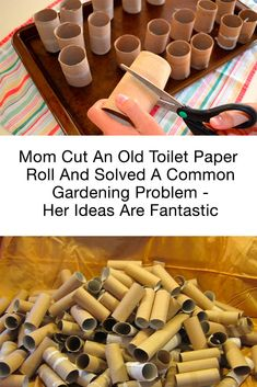 There are so many great uses for toilet paper rolls around the house! These great ideas will help you in the garden, during craft time, and more. upcycled crafts Genius Uses For Toilet Paper Rolls At Home Most People Don't Know - Life Just Got Easier Upcycled Crafts, Fun Diy Crafts, Diy Craft Projects, Crafts For Kids, Arts And Crafts, Recycling Projects, Homemade Crafts, Kids Diy, Creative Crafts