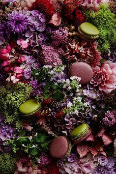 #Macaron Jardin en Corse de Pierre Hermé http://www.pariscotejardin.fr/2015/05/macaron-jardin-en-corse-de-pierre-herme/