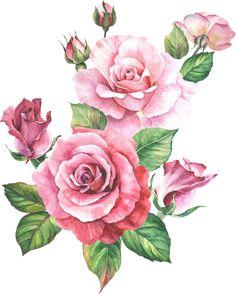 Watercolor Flowers Tutorial, Floral Watercolor, Watercolor Paintings, Beautiful Flower Drawings, Beautiful Flowers Wallpapers, Botanical Flowers, Flowers Nature, Rosen Tattoo Schulter, Rose Sketch