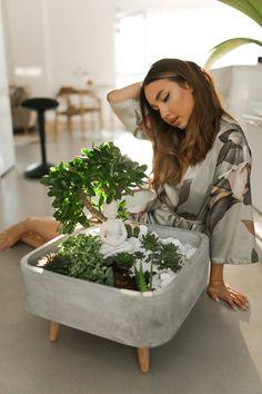 Concrete Crafts, Concrete Planters, Diy Planters, Garden Planters, Succulents Garden, Mini Zen Garden, Miniature Zen Garden, Indoor Zen Garden, Garden Terrarium
