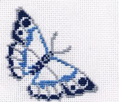 Blue-grey butterfly by aninreh