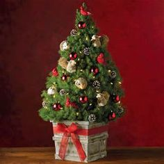 Decorated Spruce Christmas Trees Yahoo Image Search Results