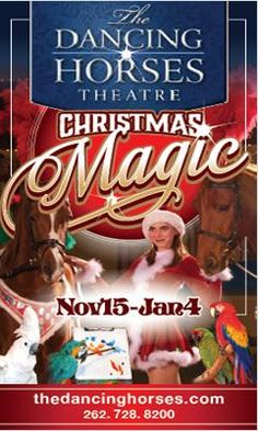 Check out the Christmas Magic Show this holiday season at the Dancing Horses Theatre!