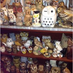 I had one just like the white owl on top shelf. It was a gift in college.  Don't know what happened to it :(