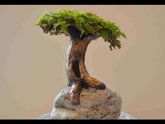 How To Sculpt A Tree On A Rock In Polymer Clay - YouTube