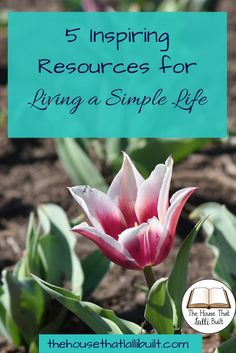 Find out what resources I found that inspired me to live a more simple life with my family.