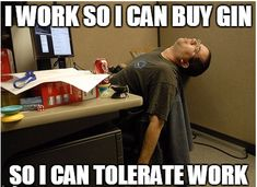 75 Thoughts Everyone Has When Hungover At Work Funny Cat Memes, Funny Cat Videos, Hilarious, Fallout 3, Hungover At Work, Congo Brazzaville, Muscle, Funny Cats And Dogs, Kids Videos