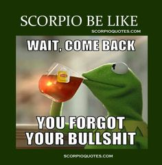 All About Scorpio, the most passionate, powerful and magnetic members of the zodiac. Scorpio Meme, Scorpio Zodiac Facts, Astrology Scorpio, Scorpio Traits, Scorpio Girl, Astrology Signs, Scorpio Sun Scorpio Moon, Funny Scorpio Quotes, Zodiac Memes