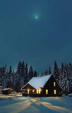 The most perfect hunting cabin ever
