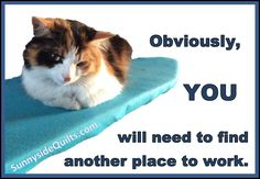Humorous and Funny Quilt Sayings
