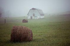 Hay bale barn in the mist
