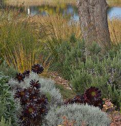 Landscape Designs of Bernard Trainor