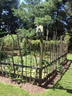 Vegetable garden with stick fencing. Awesome at keeping deer at bay.