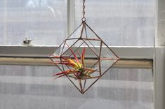 Zephyrus Terrarium, limited edition -- for air plant terrarium or small succulent -- stained glass -- terrarium supplies -- eco friendly Air Plant Terrarium, Hanging Terrarium, Glass Terrarium, Hanging Plants, Air Plants, Indoor Plants, Terrarium Supplies, Small Succulents, Fashion Room