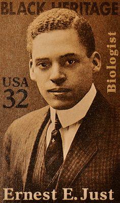 Dr. Ernest Everett Just (8-14-1883 – 10-27-1941) was a pioneering African American biologist, academic & science writer. His main legacy is his recognition of the fundamental role of the cell surface in the development of organisms. He sought the truth using scientific methods and inquiry; was bold enough to challenge the theories of leading biologists of the 19th/20th centuries. He added to our understanding of the process of artificial parthenogenesis and the physiology of cell…