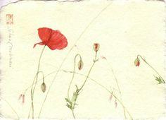 by Silvia Molinari
