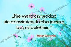 Nie wystarczy urodzić się człowiekiem... #Wyszyński-Stefan,  #Człowiek