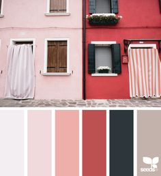 { color view } image via: @peoniesncream