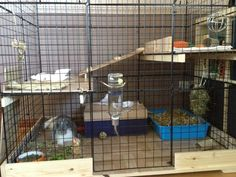 Diy Bunny Cage, Bunny Cages, Rabbit Cages, Woodworking Guide, Custom Woodworking, Woodworking Projects Plans, Bunny Care Tips, Indoor Rabbit Cage, Ferret Cage