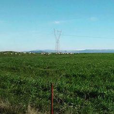 by http://ift.tt/1OJSkeg - Sardegna turismo by italylandscape.com #traveloffers #holiday | Verdi #pascoli nelle campagne di #Usellus #sardinia _ Sullo sfondo le cime del #gennargentu (scarsamente) innevate #ig_sardinia #igersardegna #igersoristano #sardinia_exp #sardignabike #sardignabdc #sardegnaofficial #sardegna_super_pics #marmilla #lanuovasardegna #igeritaly #igeritalia #igsardinia #vivoitalia #vivosardegna #sardiniaexperience Foto presente anche su http://ift.tt/1tOf9XD | February 02…