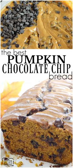 Pumpkin Chocolate Chip Bread is the perfect quick bread for fall. You don'… Pumpkin Chocolate Chip Bread is the perfect quick bread for fall. You don't have to add the chocolate chips, but they make such a great addition to this classic fall favorite! Köstliche Desserts, Delicious Desserts, Dessert Recipes, Yummy Food, Recipes Dinner, Apple Desserts, Breakfast Recipes, Pumpkin Chocolate Chip Bread, Chewy Chocolate Chip Cookies