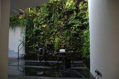 Patrick Blanc Interior Vertical Garden Workspace With Vertical Garden On Wall Exterior Children Play Courtyard Design Ideas