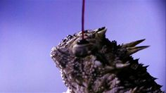 Nasty By Nature: Horned Lizard Blood Gun : Video : Discovery Channel