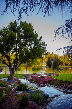 SANDY: Um...how beautiful is this particular location? The waterfall, the flowers, the lake, the bridge, wow. Grand Tradition Estate, San Diego