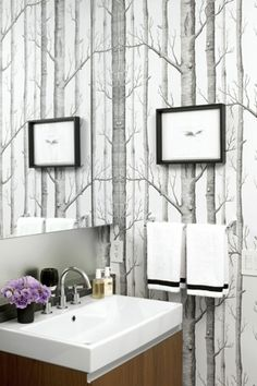 Surprising Birch Trees decorating ideas for Charming Bathroom Contemporary design ideas with bathroom birch tree wallpaper black and white bridge faucet cole and son Birch Tree Wallpaper Cole And Son, Tree Wallpaper Black And White, Black Wallpaper, Powder Room Wallpaper, Wood Wallpaper, Bathroom Wallpaper, Wall Paper Bathroom, Fornasetti Wallpaper, Contemporary Wall Decor