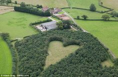 Devoted farmer creates memorial meadow to his late wife by planting thousands of oak trees