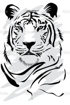 Белый тигр — стоковая иллюстрация #2275069