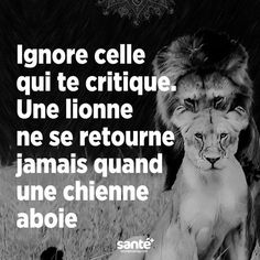 Funny Quotes : Jette quand même u - The Love Quotes Best Quotes, Love Quotes, Funny Quotes, Happy Quotes, Words Quotes, Sayings, Quote Citation, French Quotes, Positive Attitude