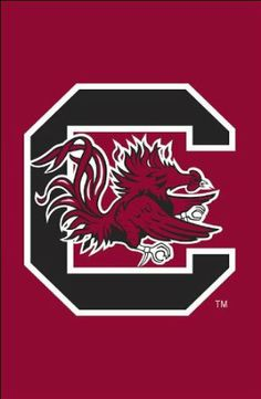Amazon.com: Applique Garden Flag - University of South Carolina: Patio, Lawn & Garden